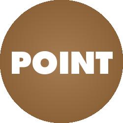 point情報